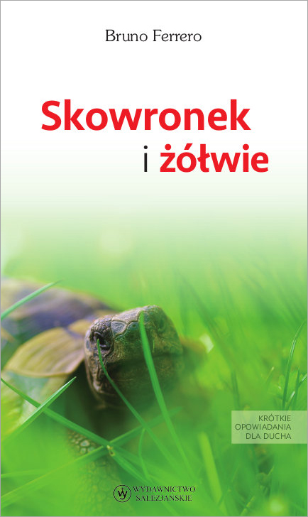 Skowronek i żółwie