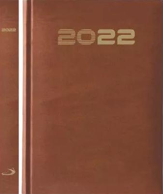 Ter'22 EP B6 LUX brązowy złocony